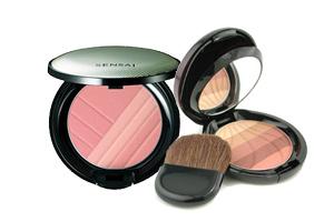 Makeup Powders